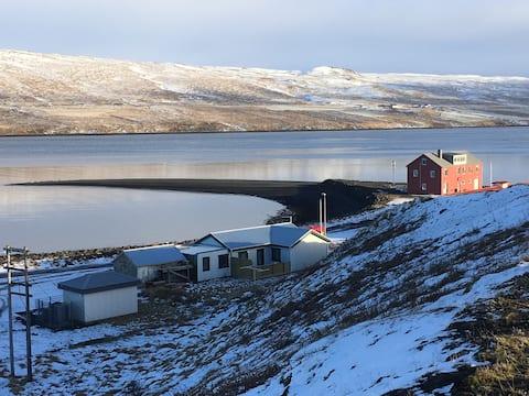 Borðeyri的黑色海滩