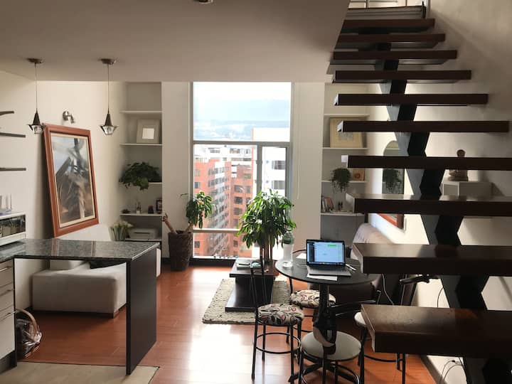 Spacious penthouse loft in República El Salvador
