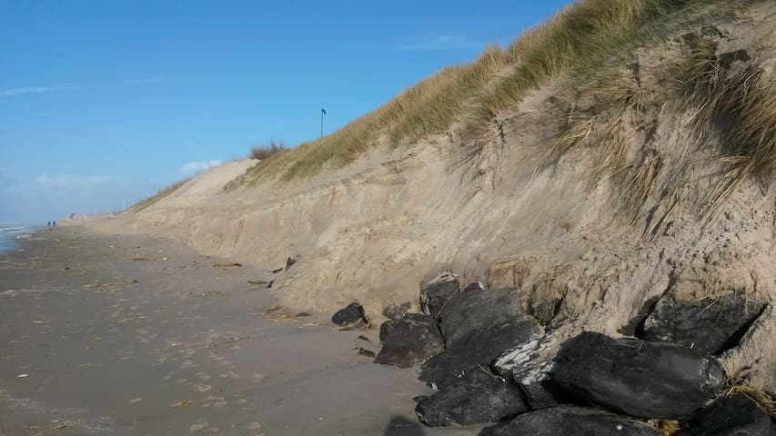 Erosion dunaire suite à tempête