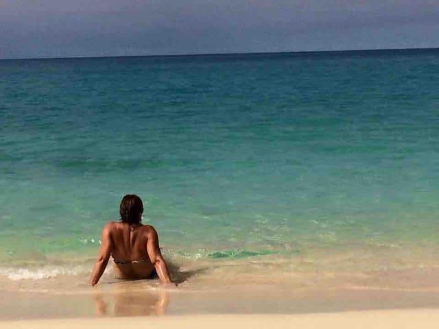 A few steps to beach  PRIVATE Bungalow Boca Ciega