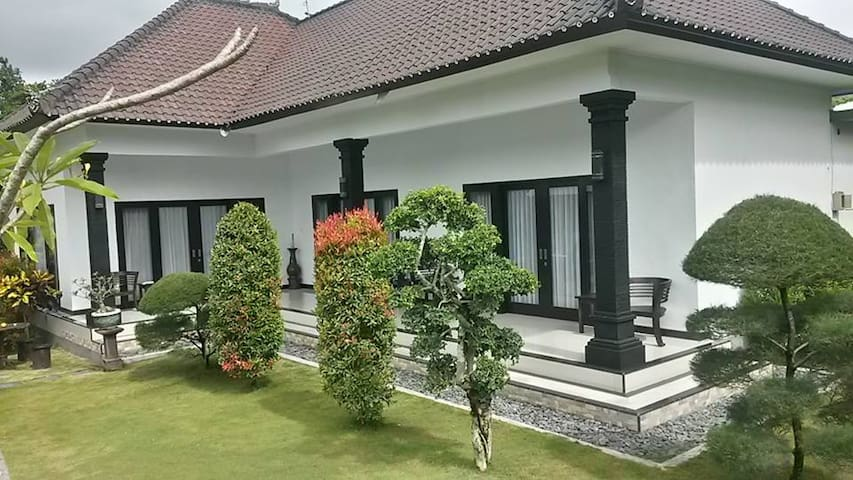 Large sunny room,great location DICATU Guest House - Mengwi - Apartment