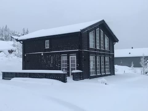 Ski in/out, Rena Alpin, Birken langrenn, utsikt.