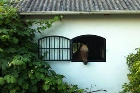 Charmigt hus på hästgård vid naturreservat - Ödåkra