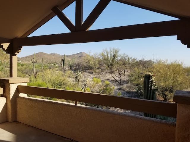 Scenic Desert Apartment - Tucson - Apartment