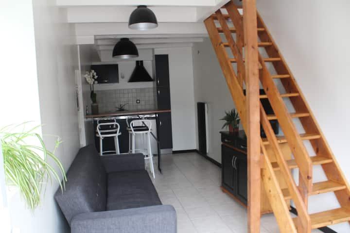 Studio  2p  Nantes Clisson Montaigu Roche sur Yon
