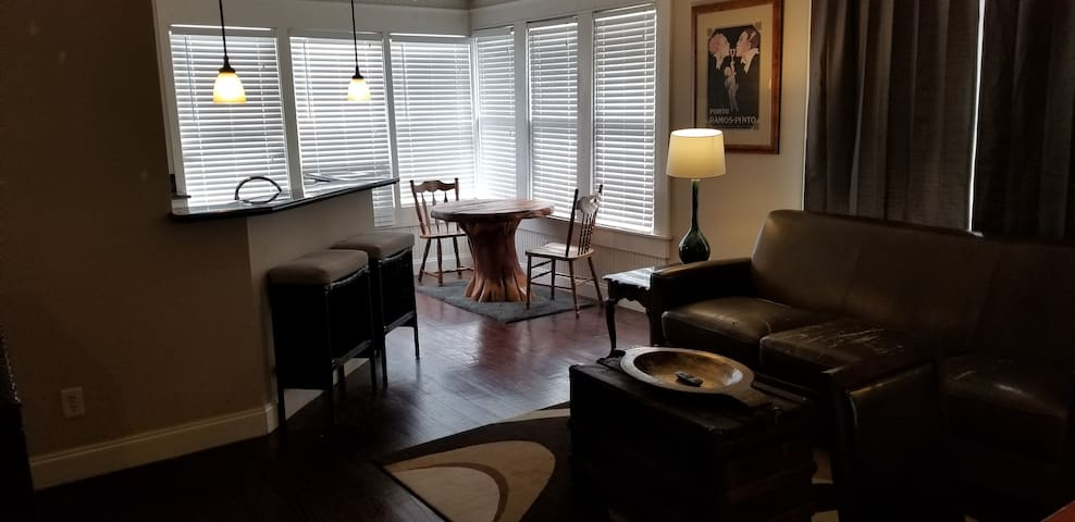Entire Oak Lawn Apartment with Balcony View