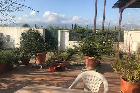 Olive and citrus farm 15 minutes from Nafplio