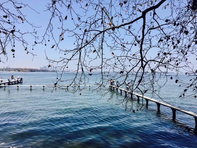 【望·山】 武汉大学校园内。邻东湖/公交可达黄鹤楼/省博/长江滩欢乐谷,东湖海洋世界