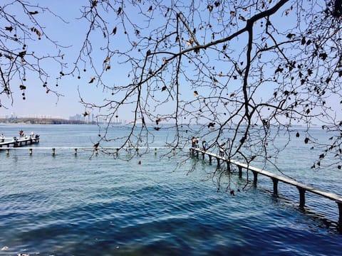 【望山】 A武汉大学校内,紧邻东湖。公交可达黄鹤楼/欢乐谷/省博物馆/江滩/海洋世界