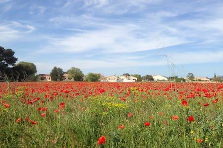 Maison de campagne avec jardin, calme et spatieuse - Saint-André-de-Sangonis - บ้าน