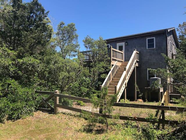 Dove's Nest in Ocracoke