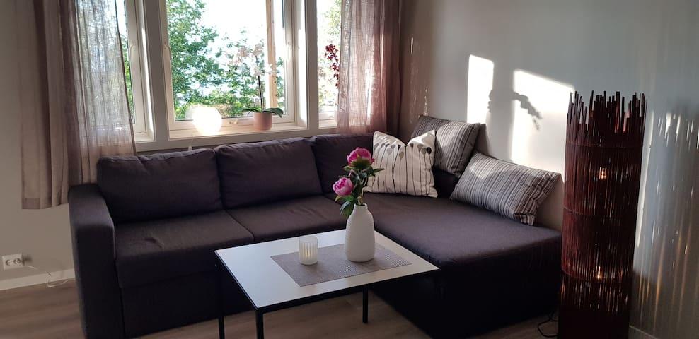Moderne leilighet med fantastisk utsikt.