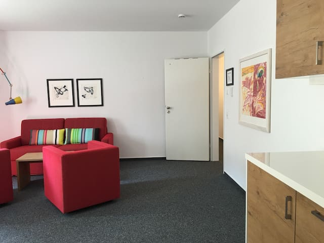 Phantastic 2BD downtown ( App. 5 ) - Biberach an der Riß - Appartement