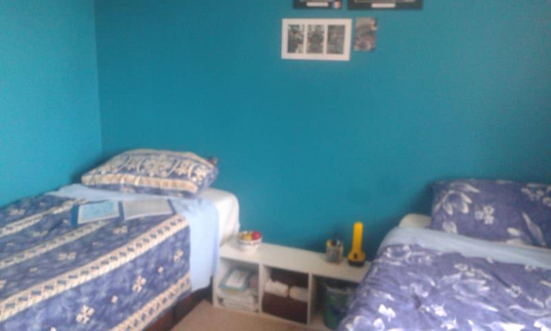 Quiet Street, Friendly Pets (Blue Room: Rm 2 of 2)