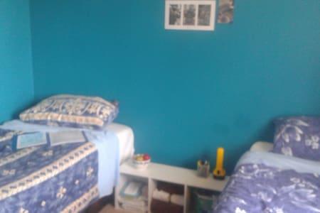 Quiet Street, Friendly Pets (Blue Room)