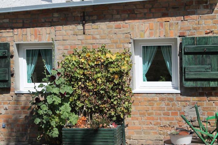 Appartement de luxe à Damgarten en Allemagne avec jardin