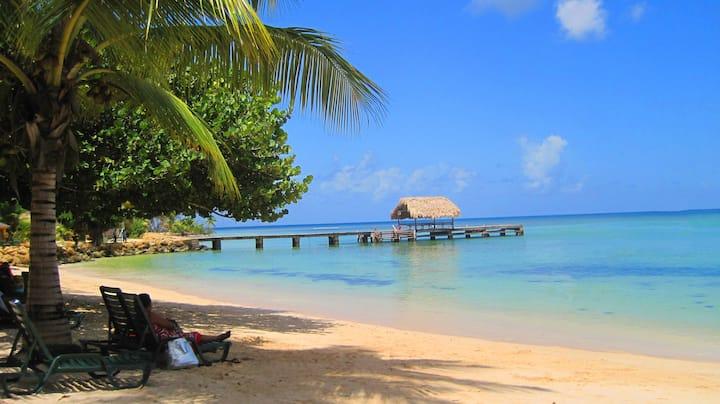 Work & Play in Comfort in Tobago at Villa Soleil