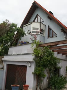 Maison d'Artist - Algolsheim - Apartment