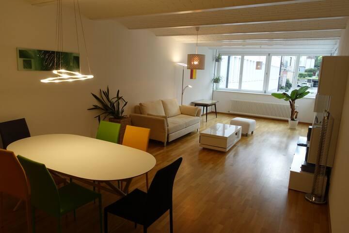 möblierte Wohnung im Zentrum von Bregenz