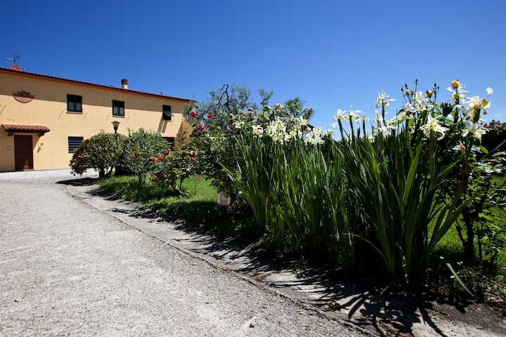 Farmhouse in the tuscany countryside near Vinci