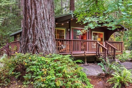 Romantic creekside cedar cabin nestled in a redwood forest - Guerneville - Cabane