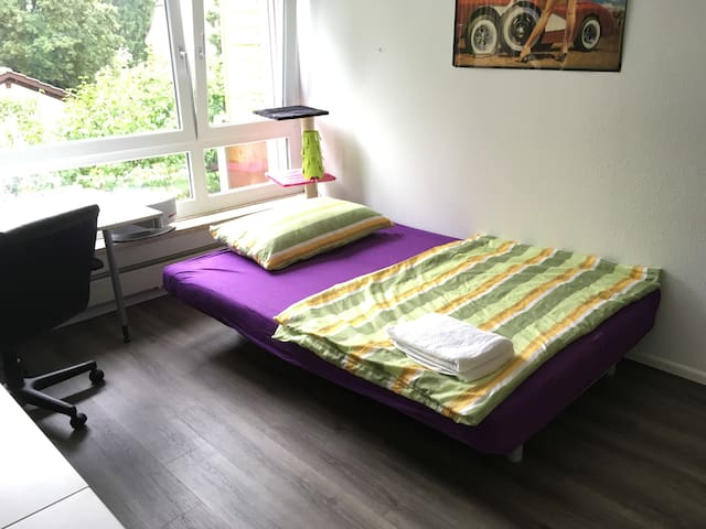 Comfy sofabed close to tram 11 - Reinach