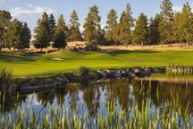 "For Golfers: Arnold Palmer Designed Golf course.  Running Y Ranch Resort is one of the premier Southern Oregon golf resorts.  ""Four""."