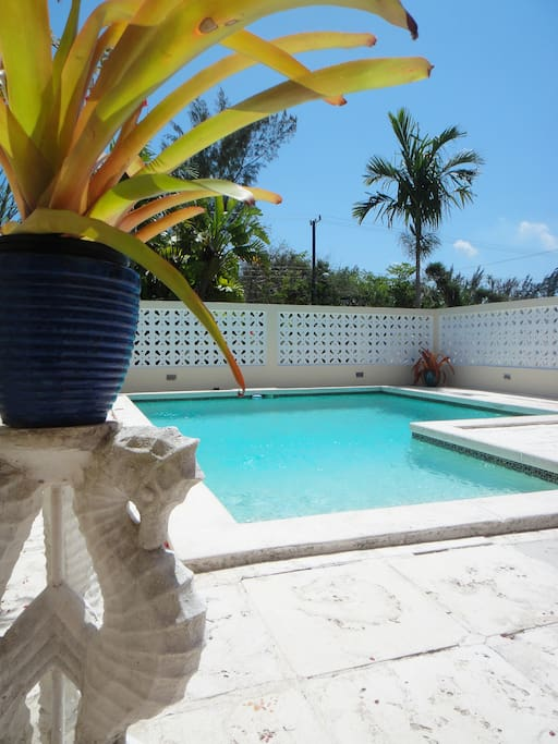 View of private, enclosed pool.
