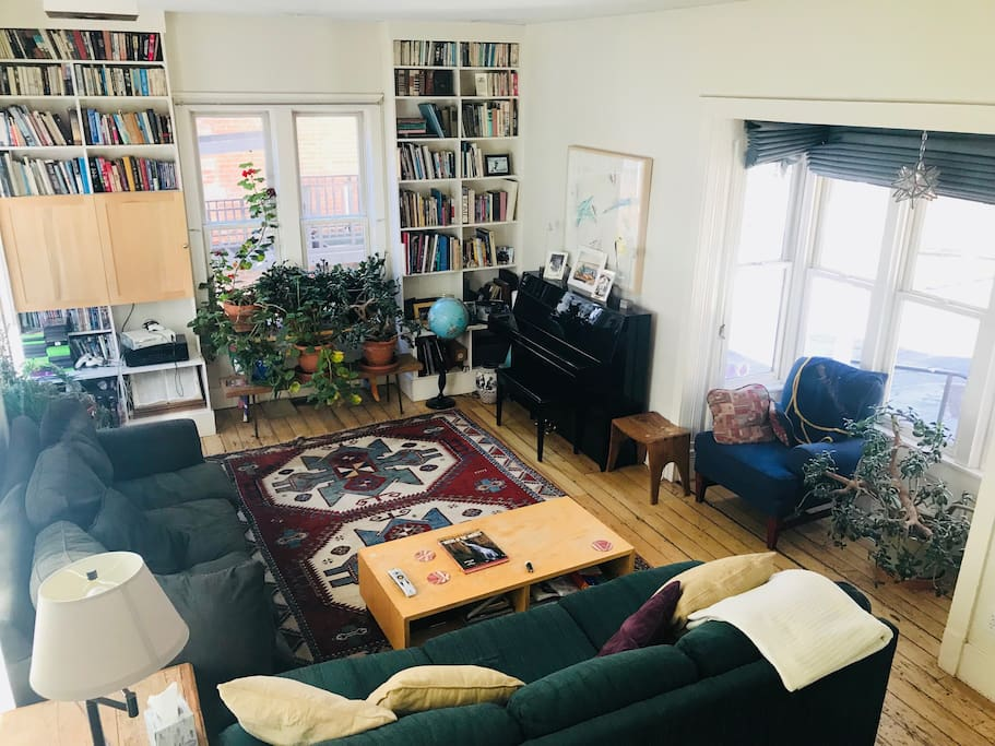 Sunny living room to read , relax, watch movies - pull out couch for 7 th guest