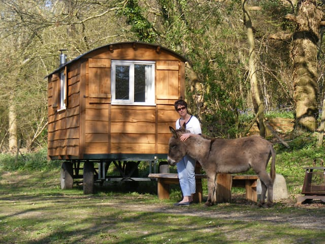 Waydown Shepherds Huts