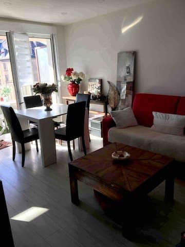 METZ appart/balcon, moderne  2 Pieces cuisine/48m2