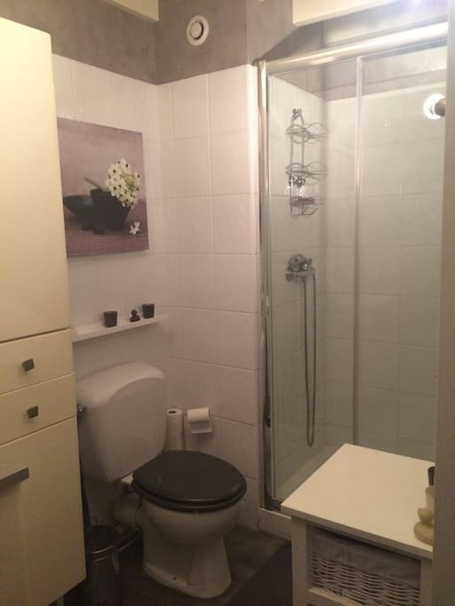Salle de bains équipée, sèche cheveux et serviettes propres! Le sèche serviette est HS mais en cas d'urgence pour les frileux(ses) un petit chauffage d'appoint est disponible.