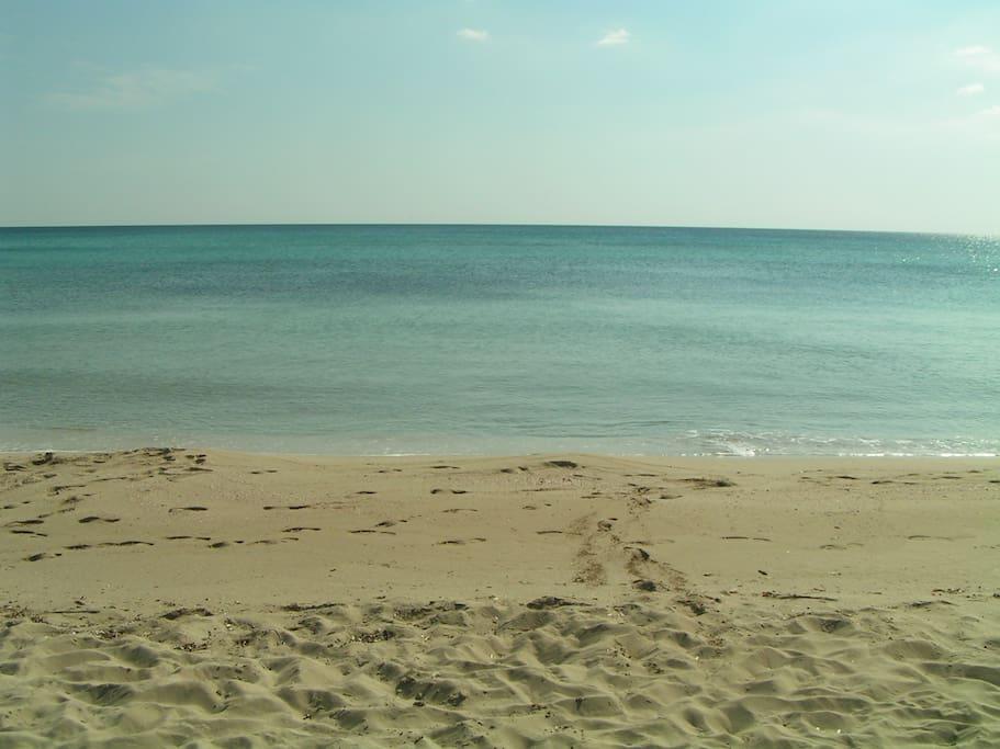 la spiaggia bianca