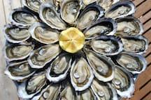 Les huîtres de Marennes-Oléron