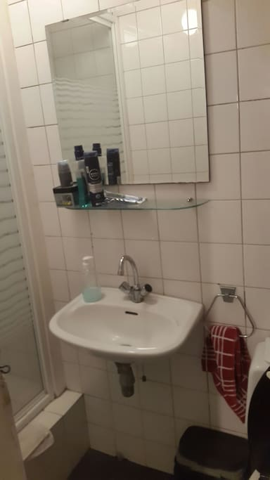The communal toilet and shower cubicle