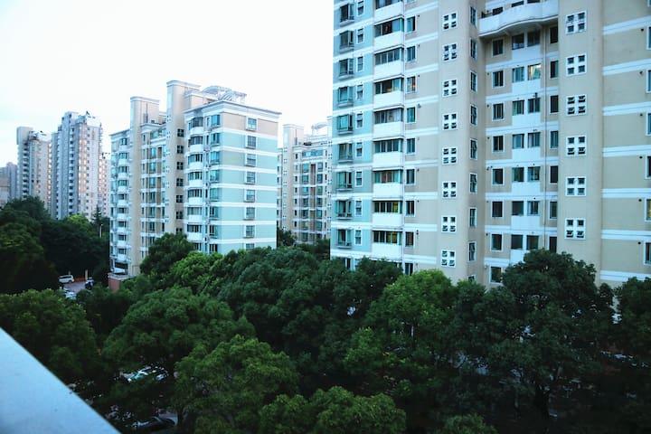 阳台看出去的景色3