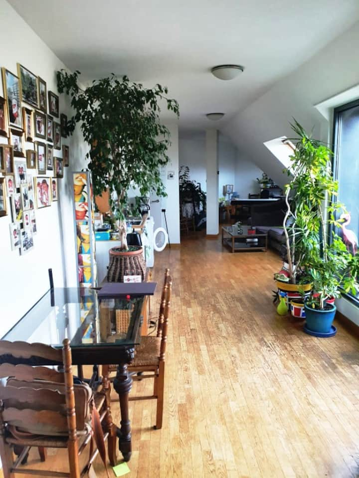 loft with terrace - European quarter Bruxelles