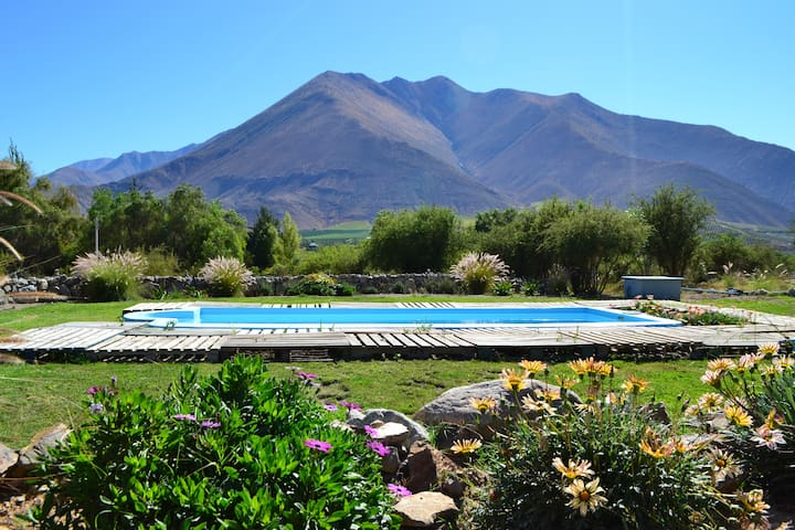 Elqui Valley, Vicuna, two bed room! - Vicuna - Oda + Kahvaltı