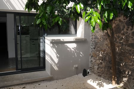 Agde town house apartment