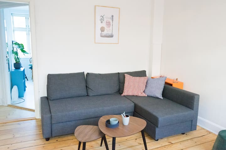Perfect Copenhagen flat for location and budget!