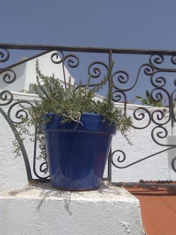 Casa Miralrio