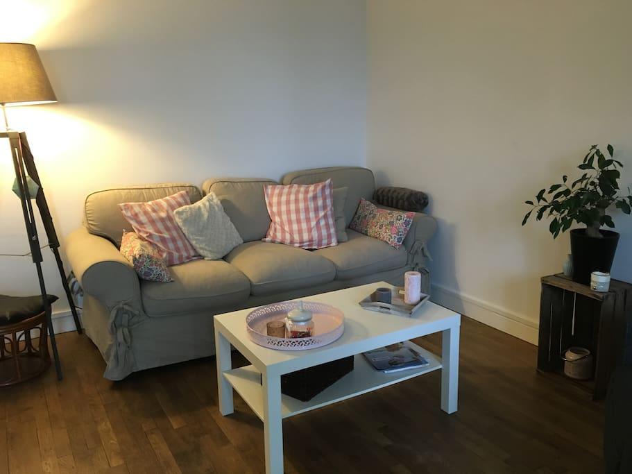 Salon avec un canapé trois places, poufs et un fauteuil.  Télé à disposition.