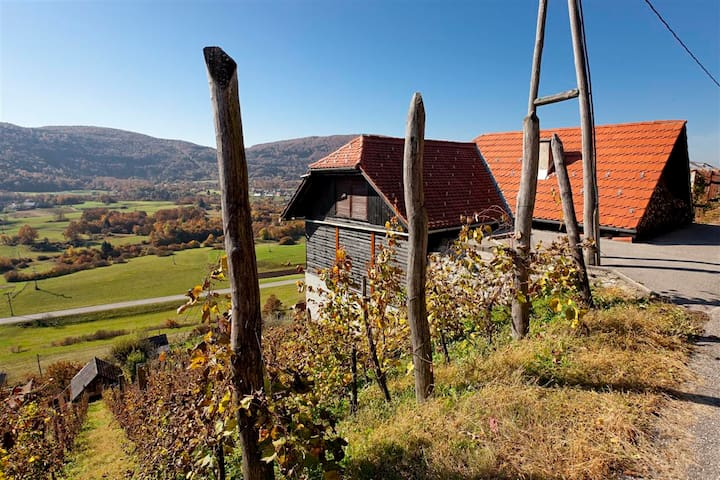 Vineyard cottage Ludvikov hram - Dvor - Casa