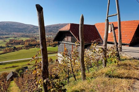Vineyard cottage Ludvikov hram - Dvor - Haus