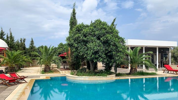 Villa avec suites piscine oliveraie et jardins