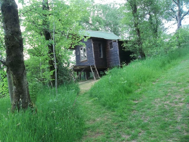 wooden cabin on stilts  - a tranquil getaway