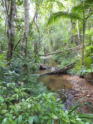 Moo Creek