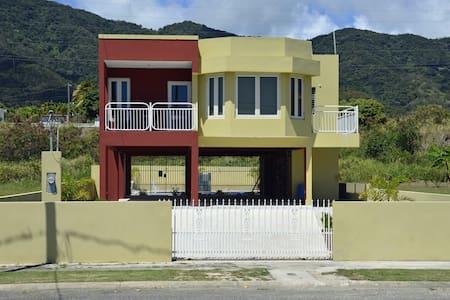 Casa Tropical - Patillas - House