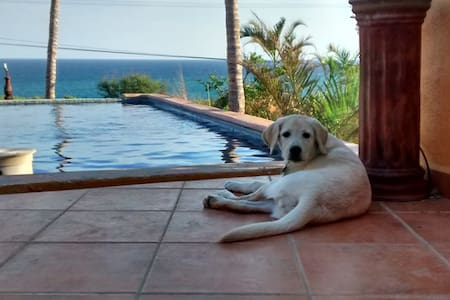 'Palapas'  Casa Mango - La Playa - Casa