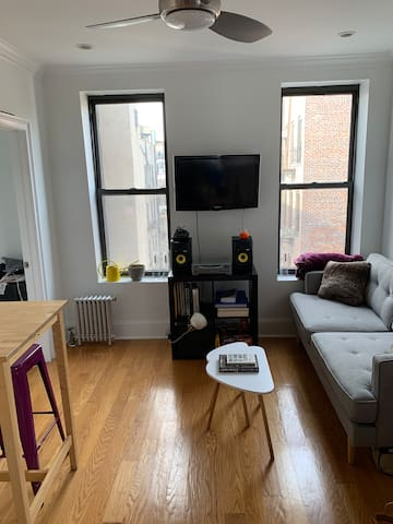 Charming + Sunny 1 BR Williamsburg Apt